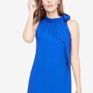 Ann Taylor blue bow dress sheath NWT 8 new